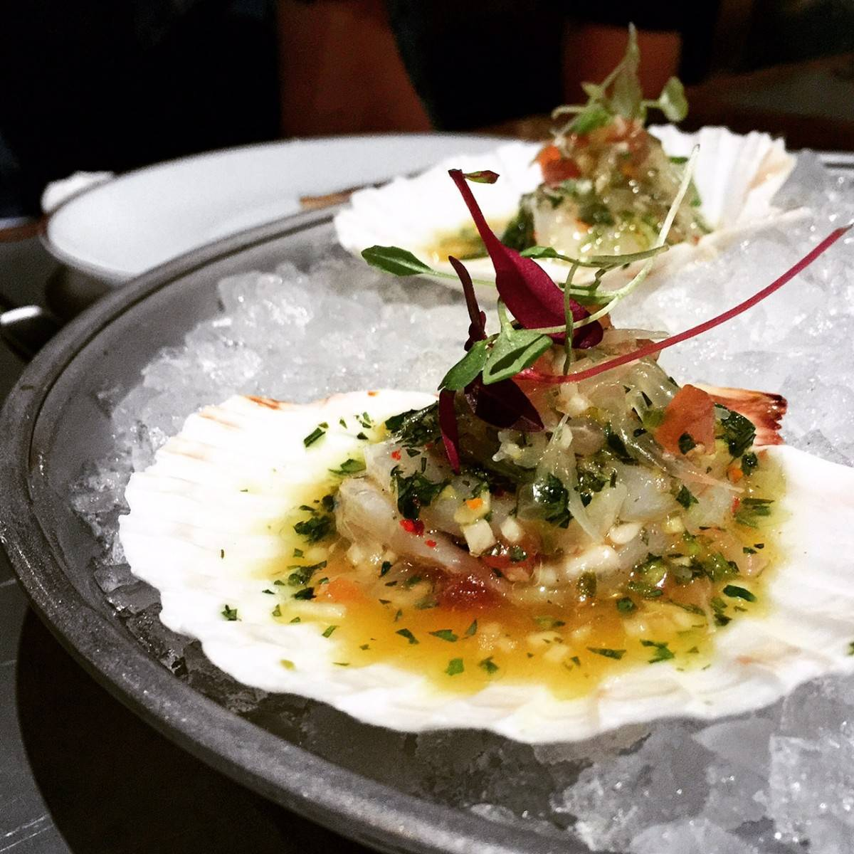 mr & mrs fox quarry bay oyster scallop ceviche elaine white