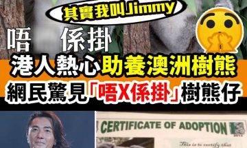 原來呢隻樹熊仔叫「Jimmy」,鄭伊健仲助養過佢,於是網民幫佢改