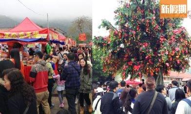 大埔林村許願節2020開鑼:新年精彩表演、嘉年華美食、25呎許願樹節目一覽|香港好去處
