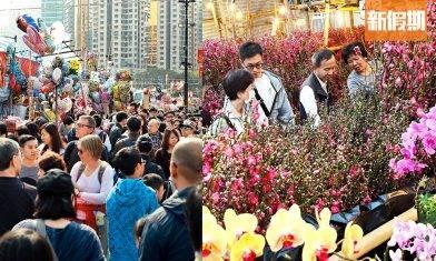 年宵花市2020合集!全港15個年宵市場+5大民間「和你宵」!維園、旺角花墟得熟食?|香港好去處