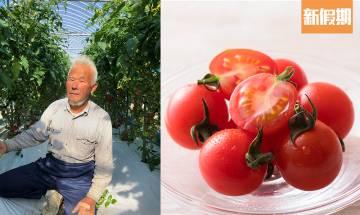 蔬菜水果食材Oisix外賣速遞!日本農場3日直送到香港 $348有15款食材 |外賣食乜好