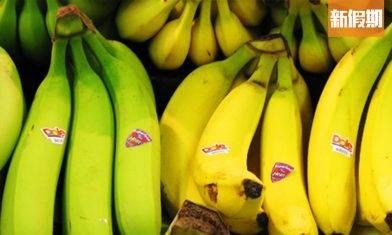 地捫官網講解生熟香蕉功效!生蕉可穩定血糖 全熟蕉可延緩衰老?!|好生活百科