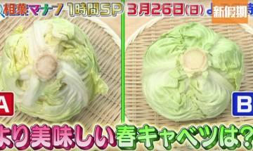 揀靚生菜貼士!日本蔬菜專家:3招保證清甜爽脆+煮菜秘技|好生活百科