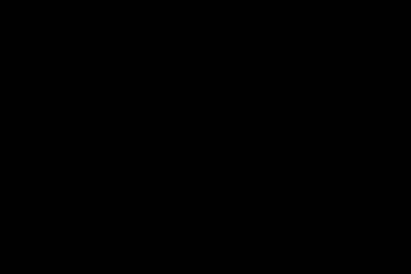 15.黑色