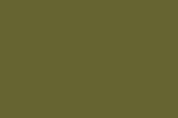 6.橄欖綠色