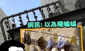 【#網絡熱話】|樓上鄰居晾咸魚團