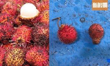 黑心商人紅毛丹浸工業用強酸 保新鮮豔紅!或有機會流出市面 誤食灼傷食道 嚴重須終身插管進食|網絡熱話