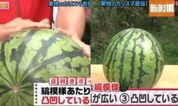 日本達人教簡單3招揀西瓜技巧 靠肉眼即可揀到!標準切割方法 有助將西瓜甜度提昇 |好生活百科