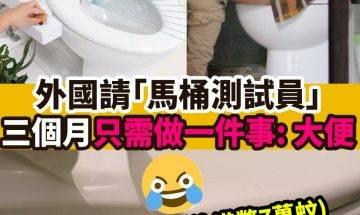 【#網絡熱話】|外國請「馬桶測試員」 !