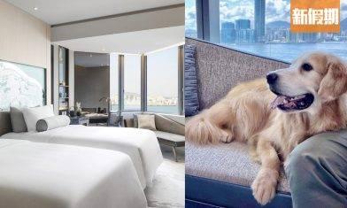 寵物友善酒店住宿優惠 跟毛孩放電一晚住宿 $999起!連狗狗歡迎禮包+大草地 |香港好去處