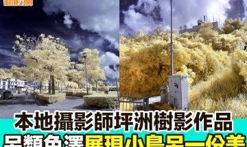 【#網絡熱話】|本地攝影師坪洲樹影作品