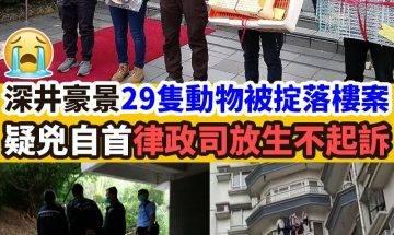 【#網絡熱話】深井豪景花園29隻動物被掟落樓案,律政司決定不提出