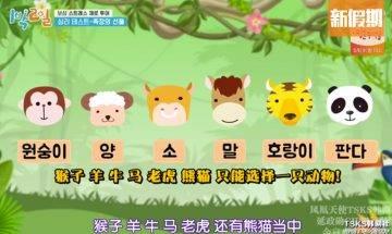 韓國大熱心理測驗 綜藝《兩天一夜》都有玩!憑直覺選一種動物 測你壓力來源|好生活百科