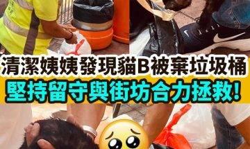 【#網絡熱話】清潔姨姨與街坊合力救貓B
