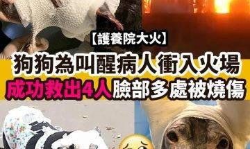 【#時事熱話】 狗狗衝火場救病人