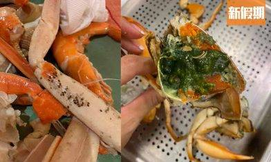熟蟹驚現綠色蟹膏!自助餐長腳蟹有黑色蟲卵食唔食得?專家解答食蟹謎思|食是食非