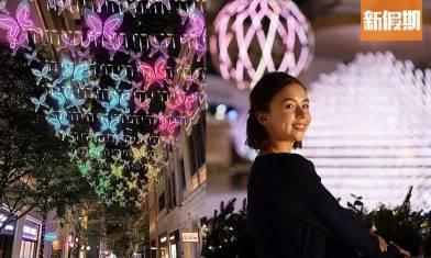 聖誕燈飾2020 全港7大必去合集!尖東+海港城3米巨型熊仔+利東街蝴蝶光影藝術裝置 |香港好去處