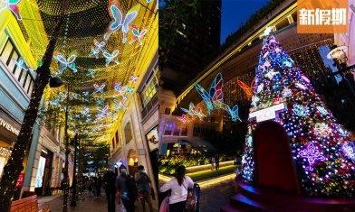 利東街聖誕燈飾2020!超夢幻350隻幻彩玻璃LED蝴蝶+12米高互動聖誕樹+聖誕音樂燈光匯演!|香港好去處