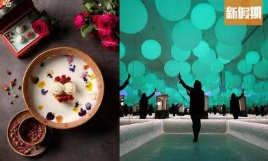 佐敦全新打卡火鍋店「香江花月」!東京Team Lab+50年代老香港做主題 必食清酒海鮮鍋+牛乳玫塊鍋|區區搵食