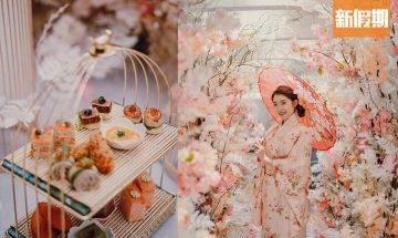 旺角Morokok推櫻花下午茶 夢幻櫻花隧道+和服體驗+12款鹹甜點 戚風蛋糕/英式鬆餅|區區搵食