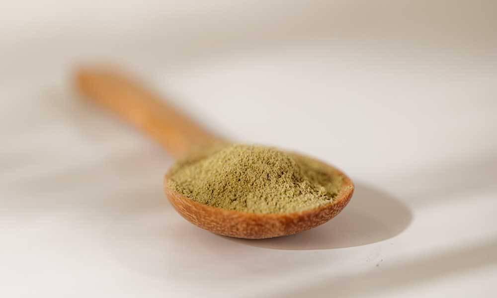 打開膠囊,修腩素粉末顏色呈淺綠色。