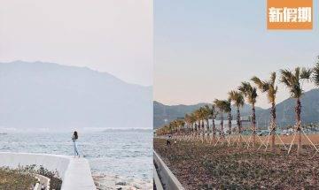 屯赤隧道必去打卡位秘點 浩和街!沿海堤壩成「港版邁亞密」 270度無敵海景看日落+詳細交通路線|香港好去處