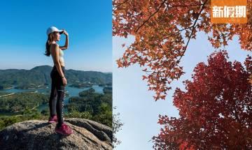 秋天行山7大簡易路線|平路多+最快1粒鐘行完 新手都行到 附交通詳情+注意事項 |香港好去處